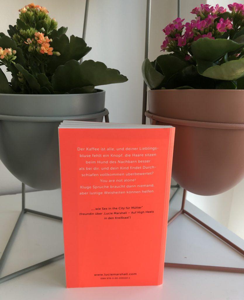 Buch Des Monats April 2018 Drei Zettel Von Lilo Lucie Marshall